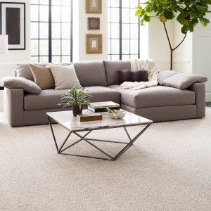 Modern living room | Price Flooring