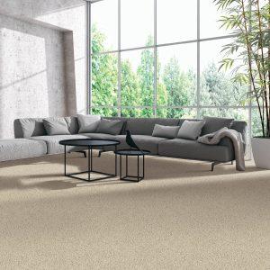 Modern living room carpet | Price Flooring