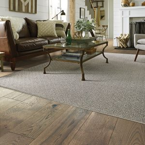 Living room grey carpet | Price Flooring