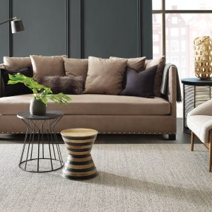 Living room carpet | Price Flooring