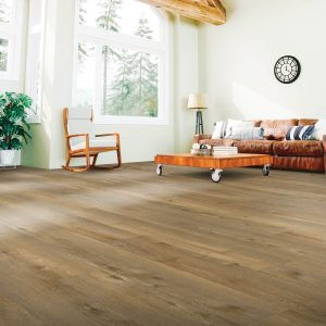 Living room Laminate flooring | Price Flooring
